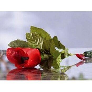 infactory singende & sprechende Rose