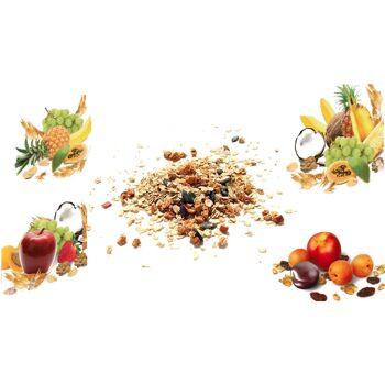Muesli different tastes / Müsli verschiedene Sorten
