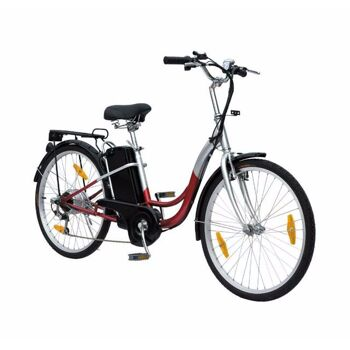 elektrische Fahrräder