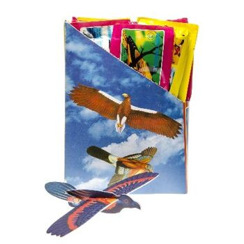 21-4895, Styropor Vögel, Flying Glider, Styropor Flieger, Styropor Flugzeuge