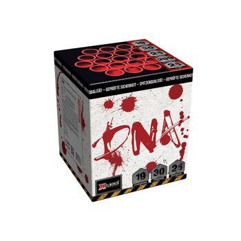 X Plode Batteriefeuerwerk DNA