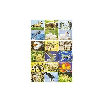 21-7339, Puzzle Wildtiere, Gesellschaftsspiel, Geschicklichkeitsspiel, Familienspiel