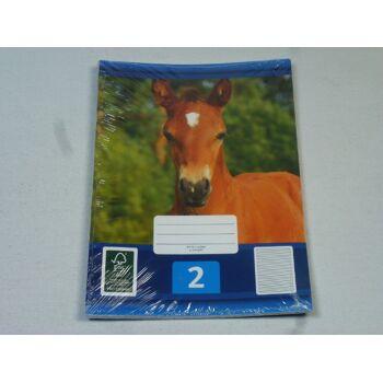 12-544023, Schreibhefte A5, 3er Pack, Nr. 2, Schulheft, Schreibblock, Schreibheft