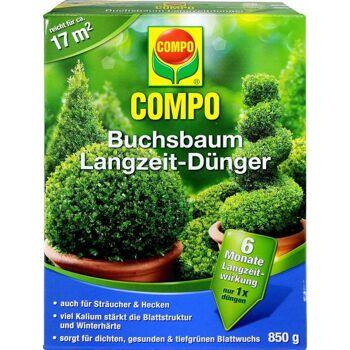 Compo Buchsbaum Langzeit Dünger