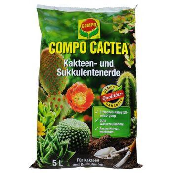 Compo Cactea-Kakteenerde