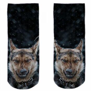 SO-L147 Motiv Socken schwarz weiß Schäferhund Schnee