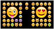 12-10025, Ordner A4 Motive hochwertig, Smiley  Wild Hippotastic Jungle Emoticons