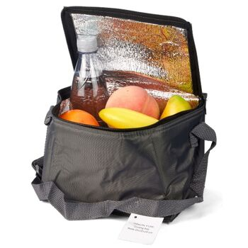 28-580916, Kühltasche 4 Liter, Isoliertasche zusammenlegbar, Camping, Garten, Freizeit, Outdoor, Wandern, usw