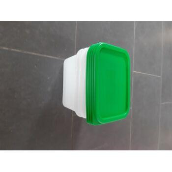 Rotho Gefrierdose Domino Set 4 x 0,75 L transparent/ grün