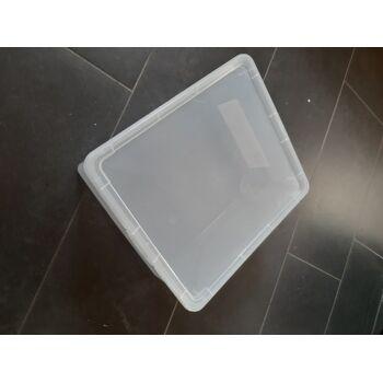 Rotho Aufbewahrungsbox Clear 18 L Transparent