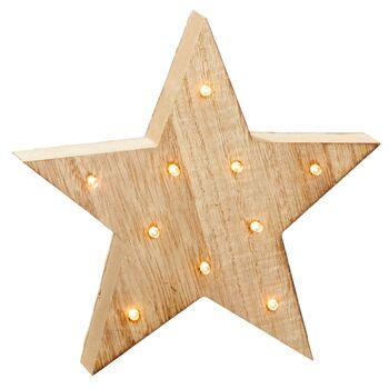 17-72541, LED Holz Stern mit 10 LED, 18cm