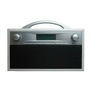 Elta DAB Radio Holzgehäuse silber/grau