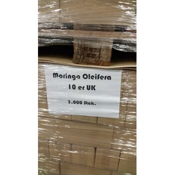 Moringa Oleifera Nahrungsergänzungsmittel 100 Kapseln 400 mg