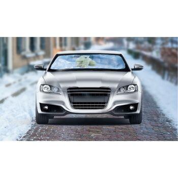 28-545271, Frostschutzdecke mit Motiv 70 x 200 cm, für PKW, Scheibenschutzdecke, Sonnenschutz, Schneeschutz