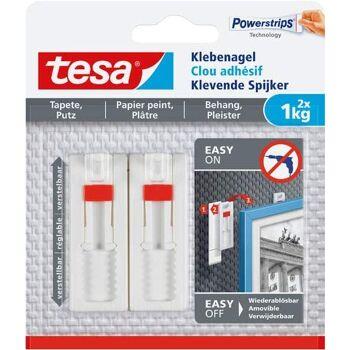 12-777740, tesa Klebenagel 2er Pack, für Tapeten und Putz, bis 1 kg Haftkraft/Nagel, ablösbar, weiß