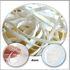 Gummiband Gummi für Masken 100 m Rolle Br: 4mm Flach Gummikordel Gummilitze