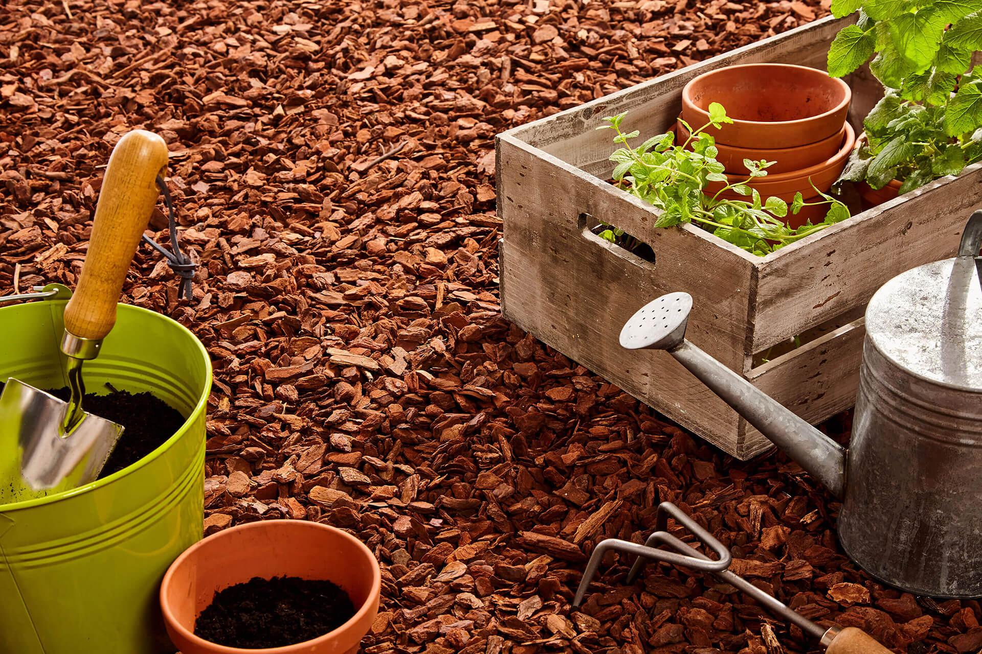 Pflanzenzubehör im Großhandel