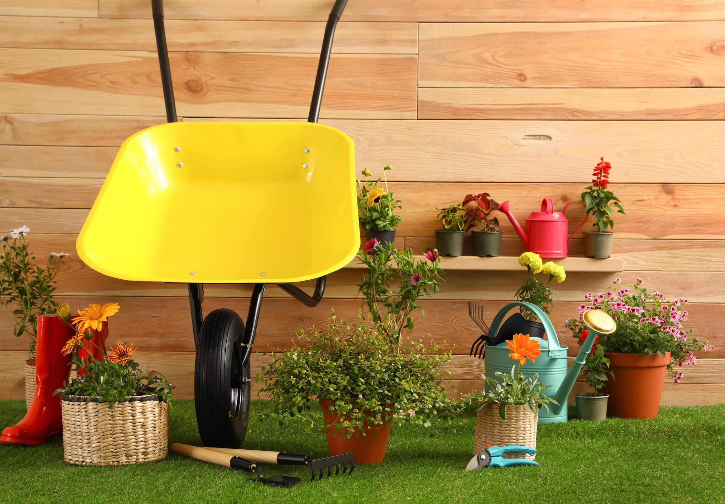 Garten, Werkzeug & DIY
